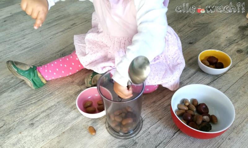 Auch Babys spielen gerne mit Kastanien