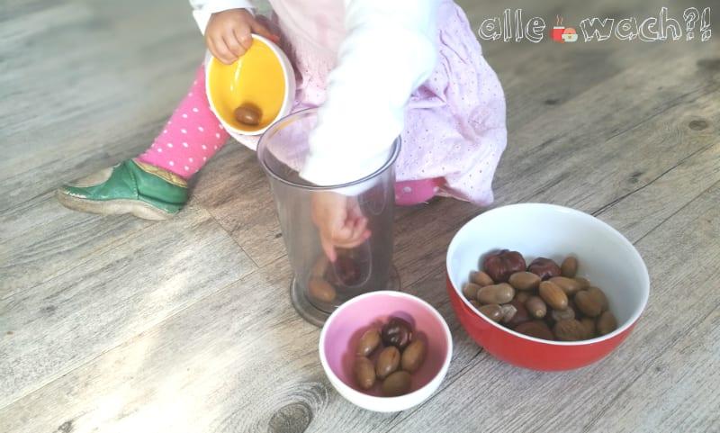 Kastanienspiel für Babys und Kleinkinder