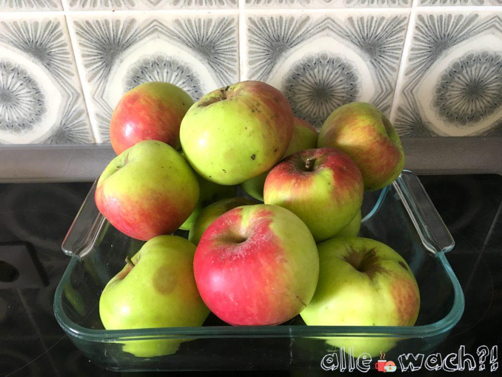 Rezept Apfelblechkuchen mit Zimtstreuseln